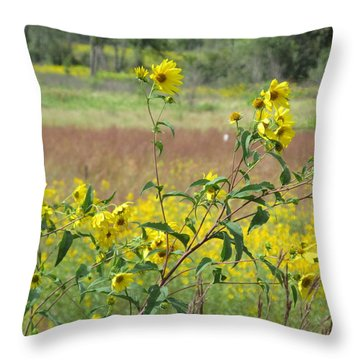 Throw Pillow featuring the photograph More Wild Daisies by Tina M Wenger