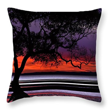 Moreton Bay View Throw Pillow