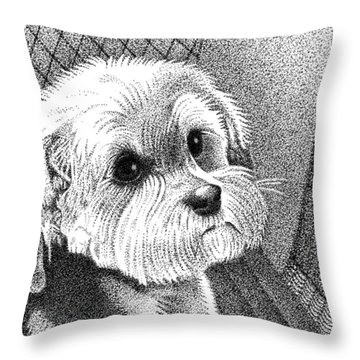 Morkie Throw Pillow