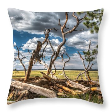 Mormon Lake Az Throw Pillow
