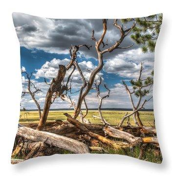 Mormon Lake Az Throw Pillow