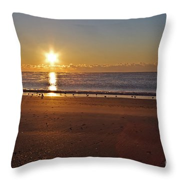 Morning After Snow Storm Throw Pillow