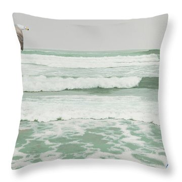 Morning At Pomponio Shore Patrol Throw Pillow