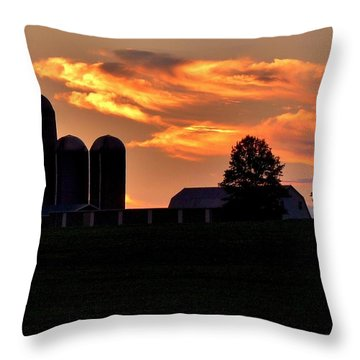 Morning Blush Throw Pillow by Robert Geary