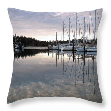 Charleston Basin Morning Throw Pillow