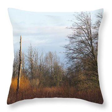 Throw Pillow featuring the photograph Morning Colors  by I'ina Van Lawick