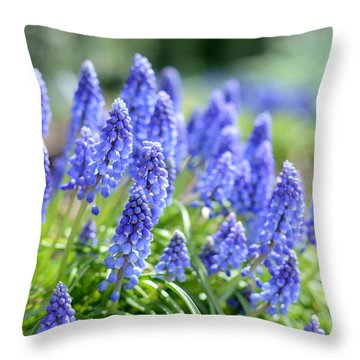 Throw Pillow featuring the photograph Morning Delight by Linda Mishler