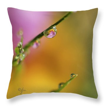 Morning Dew Throw Pillow by Arthur Fix