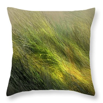 Morning Dew Drops Throw Pillow by Aaron Blaise