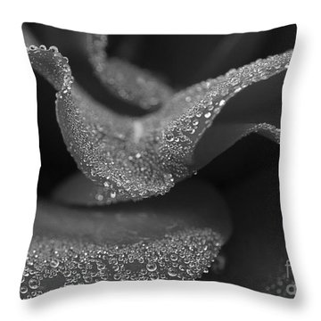 Throw Pillow featuring the photograph Morning Dew by Inge Riis McDonald