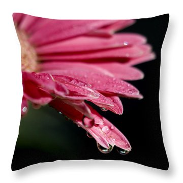 Throw Pillow featuring the photograph Morning Dew by Joe Schofield