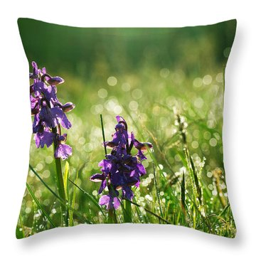Throw Pillow featuring the photograph Morning Dew by Kennerth and Birgitta Kullman