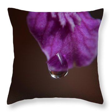 Throw Pillow featuring the photograph Morning Dew by Michelle Meenawong
