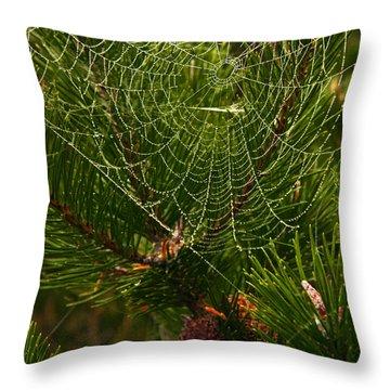 Morning Dew On Cobweb Throw Pillow