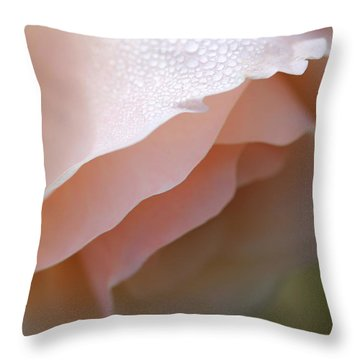 Morning Dew Peach Rose Flower Throw Pillow by Jennie Marie Schell