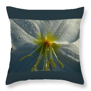 Morning Dew Throw Pillow by Steven Reed