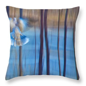 Morning Dove Throw Pillow by Theresa Tahara