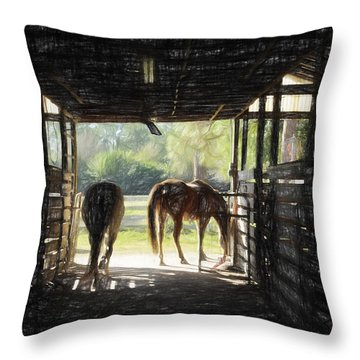 Morning Exit II Throw Pillow