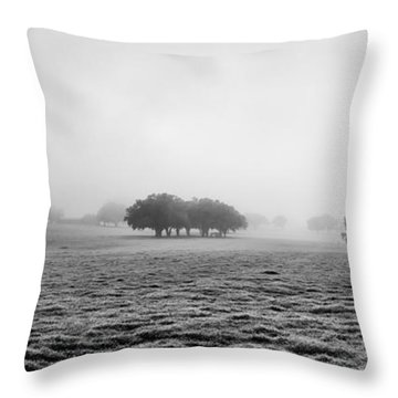 Morning Fog Throw Pillow by Howard Salmon