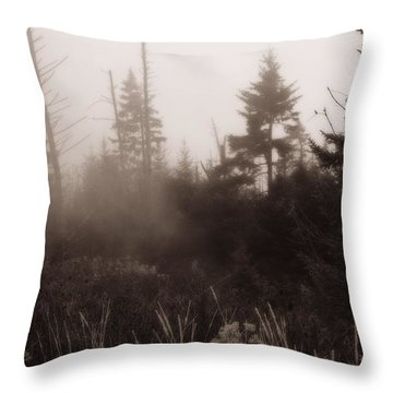 Morning Fog In The Smoky Mountains Throw Pillow by Dan Sproul