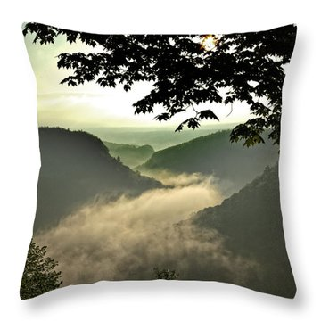 Morning Fog Throw Pillow by Richard Engelbrecht