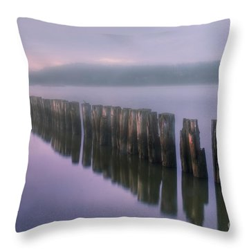 Morning Fog Throw Pillow by Veikko Suikkanen