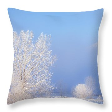 Morning Frost Throw Pillow by Darren  White