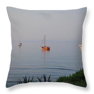 Throw Pillow featuring the photograph Morning by George Katechis