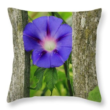 Morning Glory And Fence 2 Throw Pillow