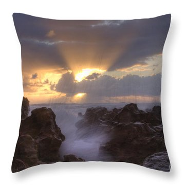 Morning Glory Throw Pillow by Darleen Stry