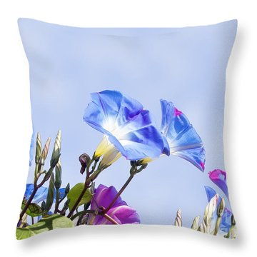 Morning Glory Flowers Throw Pillow