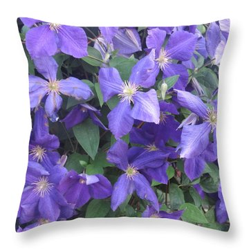 Throw Pillow featuring the photograph Clematis In Full Bloom by Tina M Wenger