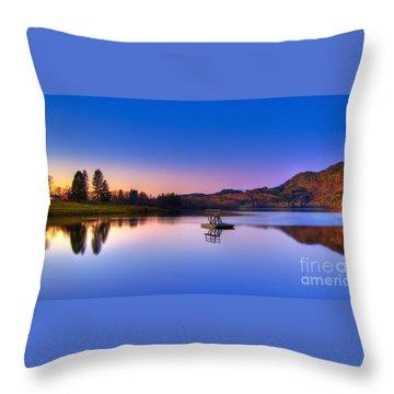 Morning Glory Throw Pillows