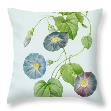 Morning Glory Throw Pillow by Pierre Joseph Redoute