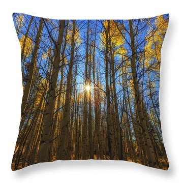 Morning Glory Throw Pillow by Rick Furmanek