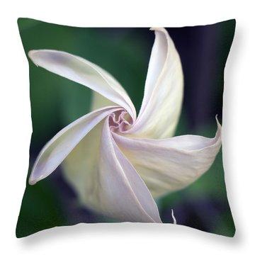 Morning Glory Unfolds Throw Pillow by Kathleen Scanlan