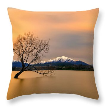 Lake Shore Throw Pillows