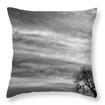 Morning Has Broken Like The First Dawning Landscape Bw Throw Pillow by James BO  Insogna