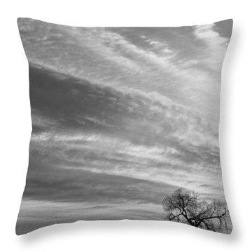 Morning Has Broken Three Trees Bw Throw Pillow by James BO  Insogna