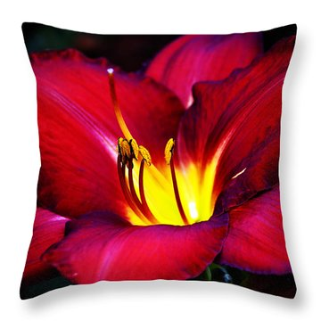 Morning Heat Throw Pillow