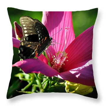 Throw Pillow featuring the photograph In The Morning by Nava Thompson