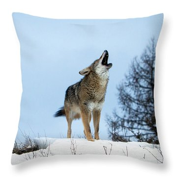 Throw Pillow featuring the photograph Morning Howl by Jack Bell