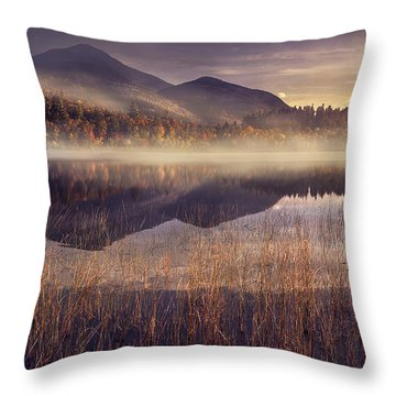Autumn Landscapes Throw Pillows