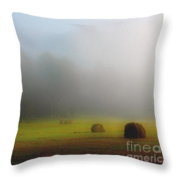 Morning In The Cove Throw Pillow