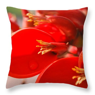 Throw Pillow featuring the photograph Morning Jog by Miguel Winterpacht