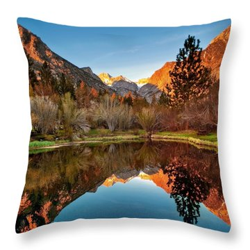 Morning Light Throw Pillow by Aron Kearney