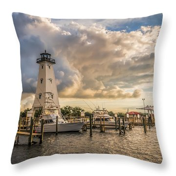 Morning Light Throw Pillow by Brian Wright