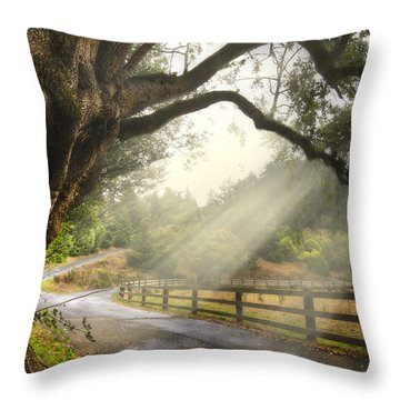 Throw Pillow featuring the photograph Morning Light by Debra and Dave Vanderlaan
