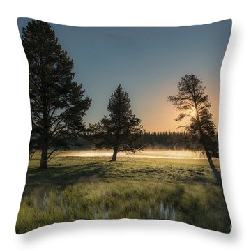 Morning Light In Yellowstone Throw Pillow by Sandra Bronstein