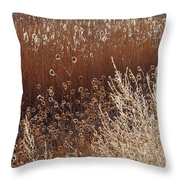 Morning Light Melody Throw Pillow by Vicki Pelham